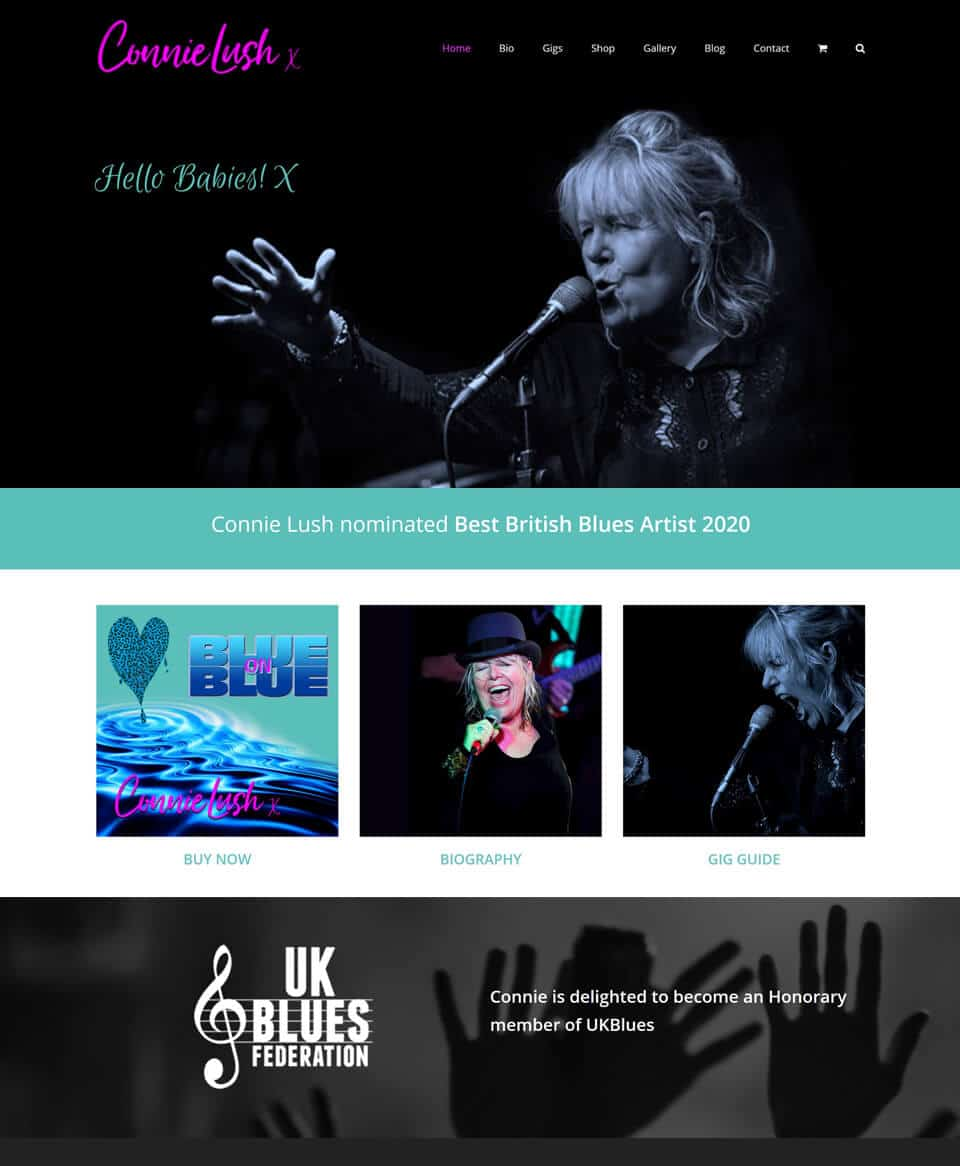 Website design for a musician